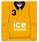 team-ice